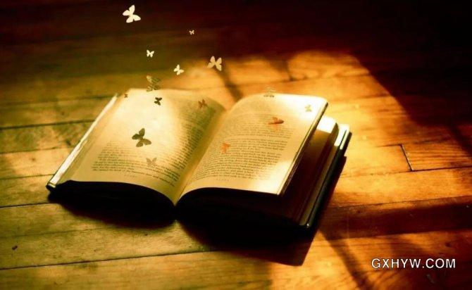 人生没有白读的书,每一本都算数